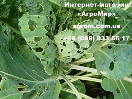 Инсектицид Веримарк (Verimark), 1 л