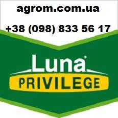 Фунгицид Луна Привиледж, (Luna Privilege) 1 л