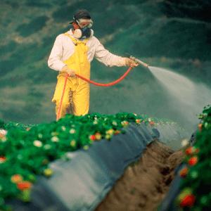фото инсектицидов на сайте АгроМир